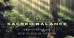 """The Sacred Balance"" (2002) 106 minutes 
