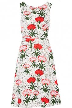 Erdem Maia Floral-Print Dress