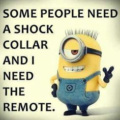 Some People Need A Shock Collar minion minions minion quotes funny minion quotes…