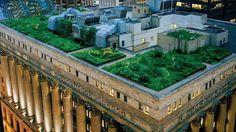 7 beneficios de los tejados verdes #diseñosostenible Space Projects, Living A Healthy Life, Urban Landscape, Tactical Gear, Clean House, Chicago, Concrete, In This Moment, Mansions