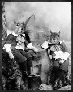 """""""Momma always said life is like a box of nuts. You never know what you're gonna get.""""  - Chip and Acorn, the squirrel twins"""