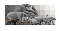 Mauricio Anton South American mammal assemblage