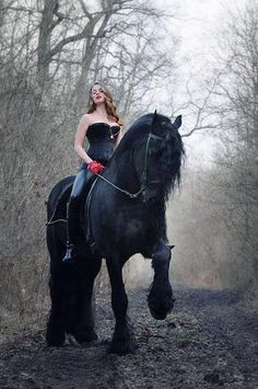 Gorgeous dark horse and lady rider on misty mountain road.