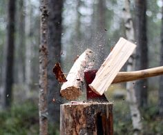 I love watching my dad chop wood. Cool pic by the way