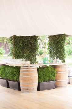 Swoon-Worthy Kurtz Orchards Wedding From Gemini Photography