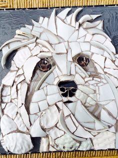Hugo, dog portrait