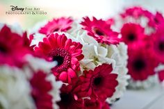 We're in love with the way these magenta gerbera daisies pop against white hydrangeas