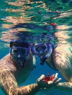 Hawaii best activities  #vacationroost