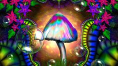 "Psilocybin – The ""Magic"" in the Mushroom"