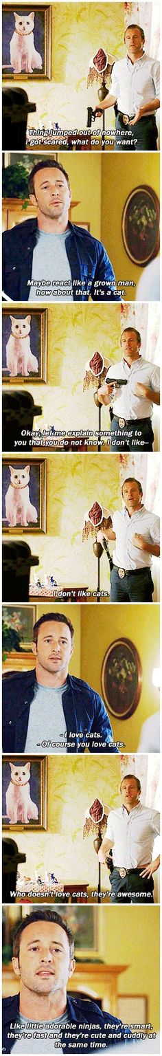 #oh steve #h50: 5.17 Of course Steve would like cats
