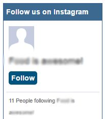 An example of the Instagram Followers widget.