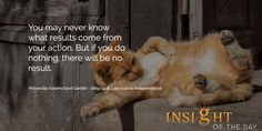 You may never know what results come from your action. But if you do nothing, there will be no result. -- Gandhi