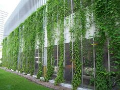 50 Green wall Design Inspiration is a part of our collection for design inspiration series.Green wall Design Inspiration is an inspirational series Green Architecture, Landscape Architecture, Landscape Design, Garden Design, Green Facade, Garden Screening, Green Building, Wall Design, Pergola