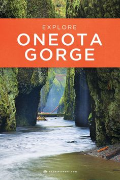The Oneota Gorge is tucked away within the stunning Columbia River Gorge!