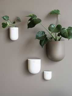 Stylish ceramic wall pot from DBKD for your plants and flowers. House Of Turquoise, O Design, Scatter Cushions, Toss Pillows, Design Online Shop, Diy Inspiration, Beige Walls, Living Room Lighting, Potpourri