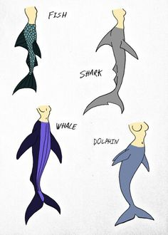 Page of my mermaid drawing guide. This one deals with types of fish and tails to use. Now I know this only features one type of fish tail and the re. Guide to properly drawing mermaids Shark Mermaid, Mermaid Pose, Mermaid Tails, Mermaid Art, Mermaid Tail Drawing, Mermaid Drawings, Mermaid Paintings, Character Design References, Character Art