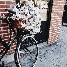 #BikeLove in#Black #FlowersAddicted #Basket