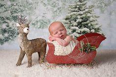 Santa Christmas Sleigh and Reindeer Newborn Baby Photo Prop Newborn Christmas Pictures, Baby Boy Christmas, Family Christmas Pictures, Santa Christmas, Baby Christmas Photoshoot, Holiday Pictures, Xmas, Newborn Baby Photos, Baby Boy Photos