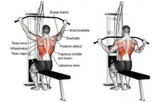 Wide-grip lat pull-down exercise guide and videos Fitness Workouts, Weight Training Workouts, Gym Workout Tips, Fitness Motivation, Fitness Abs, Fitness Quotes, Lady Fitness, Mens Fitness, Female Fitness
