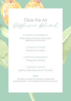 Keep your home fresh and help eliminate those airborne pathogens! Homemade Essential Oils, Buy Essential Oils, Natural Essential Oils, Essential Oil Blends, Aromatherapy Recipes, Aromatherapy Oils, Handy Tips, Helpful Hints, Natural Healing