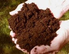 composting my-secret-garden