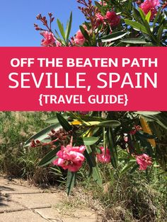 Escape the touristy areas and wander the streets of Seville off the beaten path: explore ruins, street art, hip neighborhoods and scenic parks.