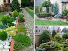 20+ zahradních inspirací pro líné hospodyňky! O takovouto zahradu se nemusíte vůbec starat, protože roste sama od sebe!