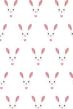where is mr rabbit?: