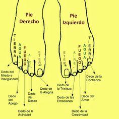 """""""Los pies reflejo de la personalidad""""  Según este libro de Imre Somogyi, mediante la lectura de los dedos de los pies podemos obtener detal..."""