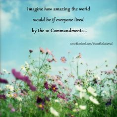 Imagine.. www.facebook.com/thecatholicsignal Faith Of Our Fathers, 10 Commandments, A Way Of Life, Blessings, Quotes To Live By, Catholic, Religion, Angels, Wisdom
