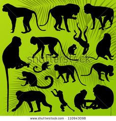 Monkey, ape and chimpanzee detailed silhouettes illustration collection background vector by kstudija, via Shutterstock