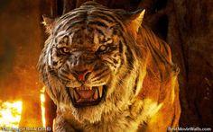 One scary #kittie :] #JungleBook