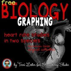 Biology GRAPHING Practice: HEART RATE STUDIES in Two Species w Common Core | by Strawberry Shake | $Free