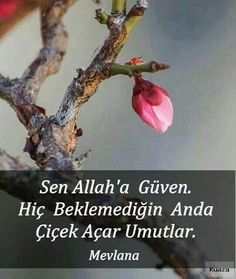 Sen Allah'a güven. Hiç beklemediğin anda çiçek açar umutlar …