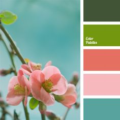 Contrasting Palettes | Page 52 of 81 | Color Palette Ideas