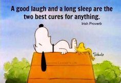 Laugh & Sleep!