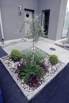 25 Simple And Small Front Yard Landscaping Ideas (Low Maintenance) Add value to your home with best front yard landscape. Explore simple and small front yard landscaping ideas with rocks low maintenance on a budget. Small Front Yard Landscaping, Backyard Landscaping, Landscaping Ideas, Back Gardens, Outdoor Gardens, Dream Garden, Garden Planning, Garden Paths, Garden Trees