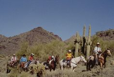 Horseback riding in the Sonoran Desert