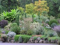 Photos of Butchart Gardens, Brentwood Bay - Attraction Images - TripAdvisor