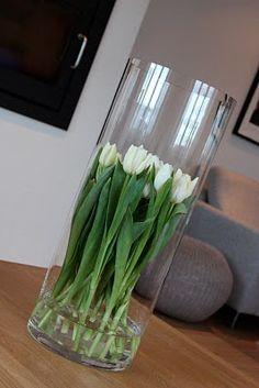 Keeping tulips looking fresh