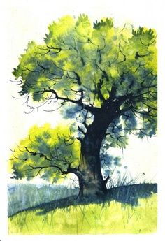 easy watercolor paintings for beginners trees Tree Watercolor Painting, Watercolor Paintings For Beginners, Watercolor Architecture, Watercolor Landscape Paintings, Landscape Art, Watercolor Flowers, Watercolor Portraits, Knife Painting, Watercolor Artists