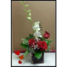 Flower Delivery to Three Hills AB satisfaction guarantee. Flower Delivery, Valentines Day, Flowers, Plants, Romance, Valentines Diy, Valentine's Day, Valentines, Flora