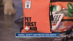 Oct 4, 2016 - Our Pet First Aid kit was featured on a segment on CTV News Vancouver.