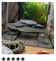 Turtle Aquarium, Aquarium Rocks, Turtle Pond, Aquarium Fish Tank, Planted Aquarium, Cool Fish Tank Decorations, Aquarium Decorations, Aquarium Ideas, Slate Rock