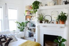"""No closets and no money means lots of clever storage solutions and a """"Modern-bohemian-poor-college-student"""" style in this shared home."""