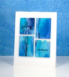 blue paneled iris | by Heather Telford