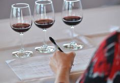 """""""Wine: How to spit, sip, and appreciate vino"""" - Great tips on how to enjoy wine like a pro!"""