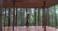 x-studio's wooden pavilion in japanese forest pays homage to black-ink paintings