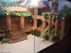 Explore Shayne Colbert's photos on Photobucket. Bearded Dragon Enclosure, Bearded Dragon Cage, Bearded Dragon Habitat, Bearded Dragon Vivarium, Terrariums, Terrarium Reptile, Gecko Terrarium, Reptiles, Mon Zoo
