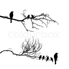 Image of 'vector silhouette of the birds on branch'